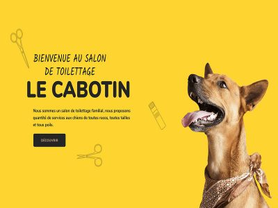 le-cabotin-toilettage-site-digisuisse-wordpress-folio